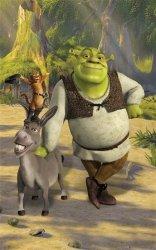 Fototapeta dla dzieci - Shrek - 3D - 244x152cm