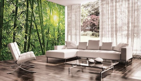 Fototapeta do sypialni - Las Bambusowy - 366x254 cm