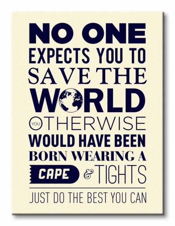 Save The World - Obraz na płótnie