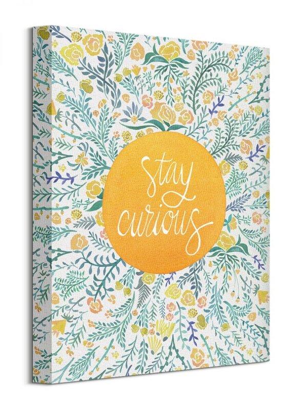 Stay Curious - Obraz na płótnie