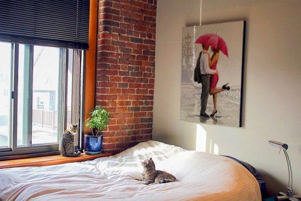 Obraz na ścianę - Cupid's Lantern