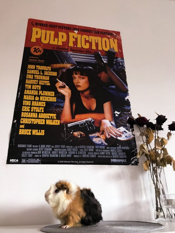 Pulp Fiction (Cover)- plakat