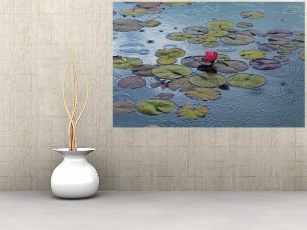 Fototapeta na ścianę - Wodna Lilia - 175x115 cm