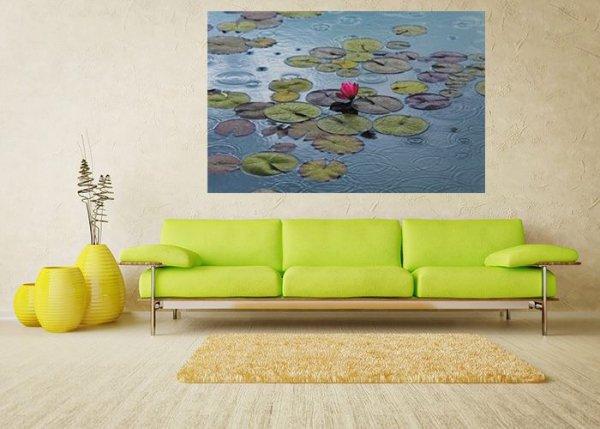 Fototapeta na ścianę - Wodna Lilia - Fototapety z kwiatami