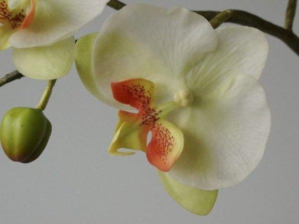Sztuczny storczyk - Biały - Sztuczne Kwiaty - Sklep Internetowy decoart24.pl