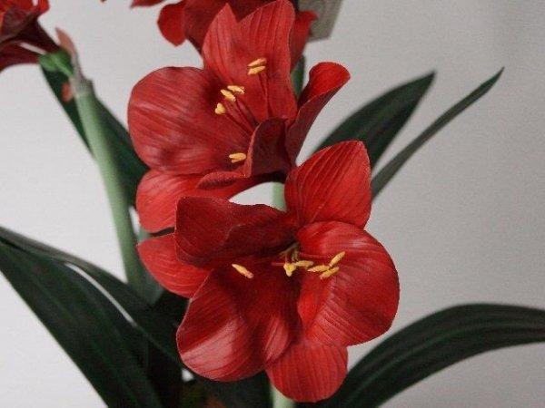 Sztuczny Amarylis - Czerwony - W doniczce - 45x75cm
