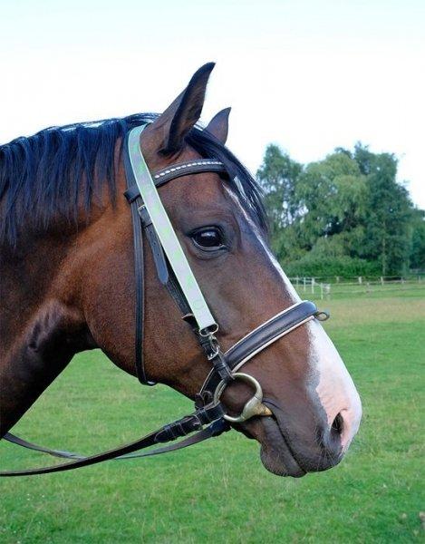 Smycz do kluczy HR odblaskowe Konie zielona