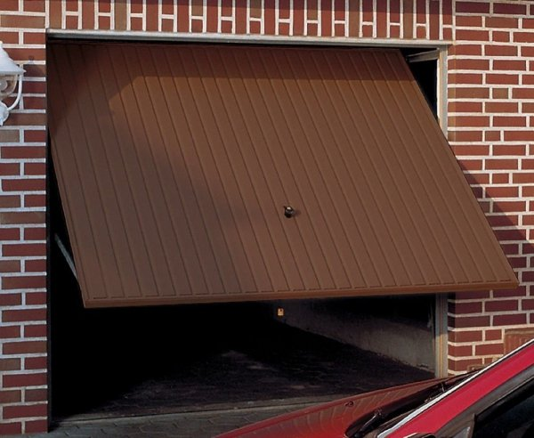 Brama uchylna N 80, 2500 x 2125, Wzór 905 z drzwiami, do wypełnienia