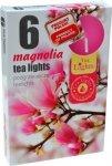 PODGRZEWACZ 6 SZTUK TEA LIGHT Magnolia