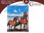 Talerz dekoracyjny-Konie - 20x28cm